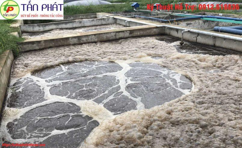 bùn vi sinh xử lý nước thải