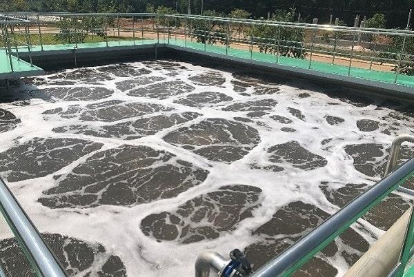 Bùn vi sinh ứng dụng trong xử lý nước thải